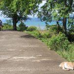 穏やかな時間が流れる「シパワイ島」(フィリピン・セブ)。自転車でぶらり島めぐり
