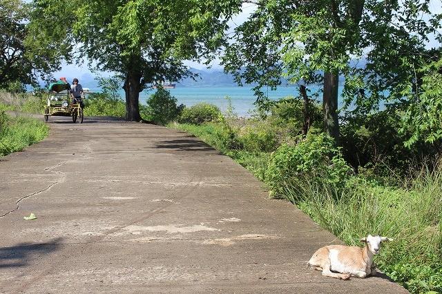 穏やかな時間が流れる「シパワイ島」(セブ島)で自転車でぶらり島めぐり