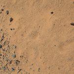 風で足跡が消える前に、砂漠で生きる知恵が時間とともに消える前に  砂漠を移動するノマドをさがして