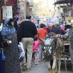 【ガイドブックにないエジプト】イスラミックカイロに隣接する庶民的すぎるスーク