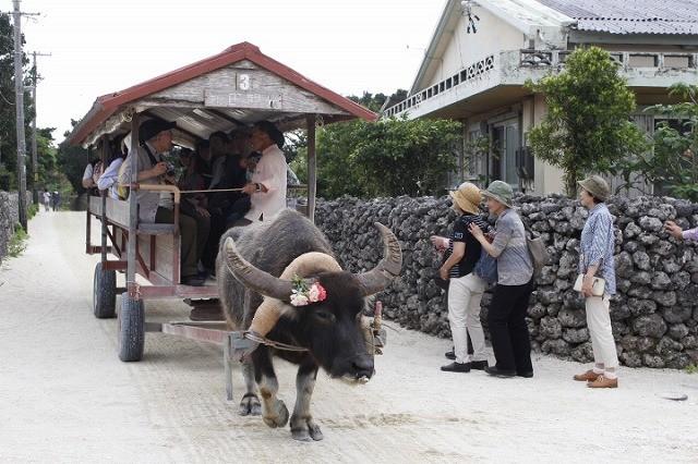 竹富島の観光ポイントと宿の紹介