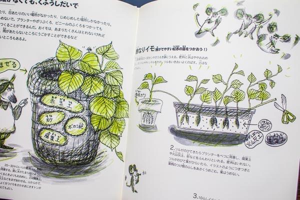 サツマイモの絵本