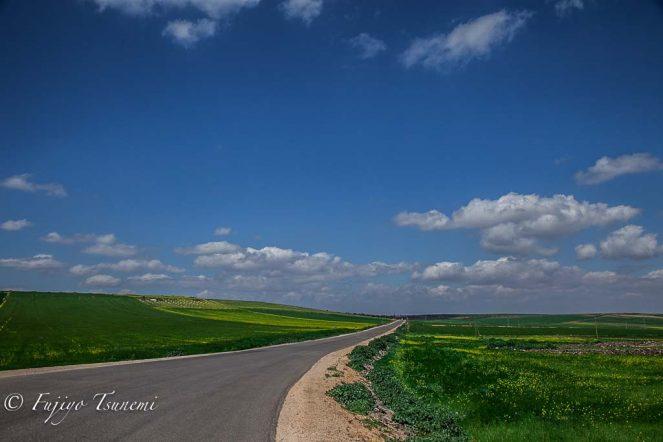 シリアの農村地帯