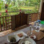 【ロンボク島・テテバト(インドネシア)】のどかで美しい村で、唯一危険なものとは?