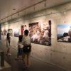 世界の猫と犬を撮り続ける写真家・新美敬子さんの写真展