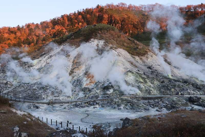 Tamagawa akita 2
