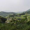 鹿児島県の山奥の集落で、田舎暮らし体験をしてきました。