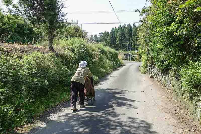 Kagoshima 6