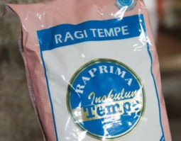 テンペの発酵菌