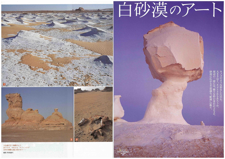 白砂漠(「週刊新潮」)(1)