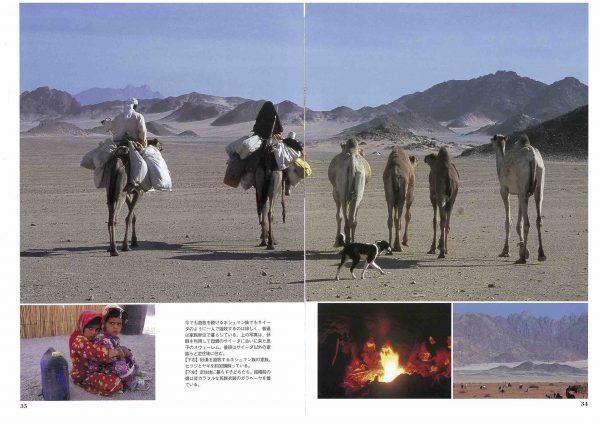 「まほら」サイーダ・砂漠で一人生きる(4)