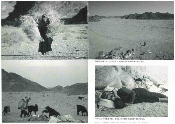 「自治研」砂漠に生きる (3)