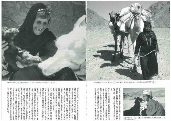 「自治研」砂漠に生きる (2)